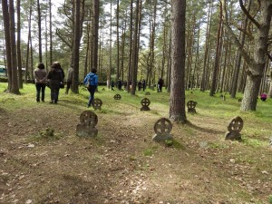 захоронения викингов наВормси