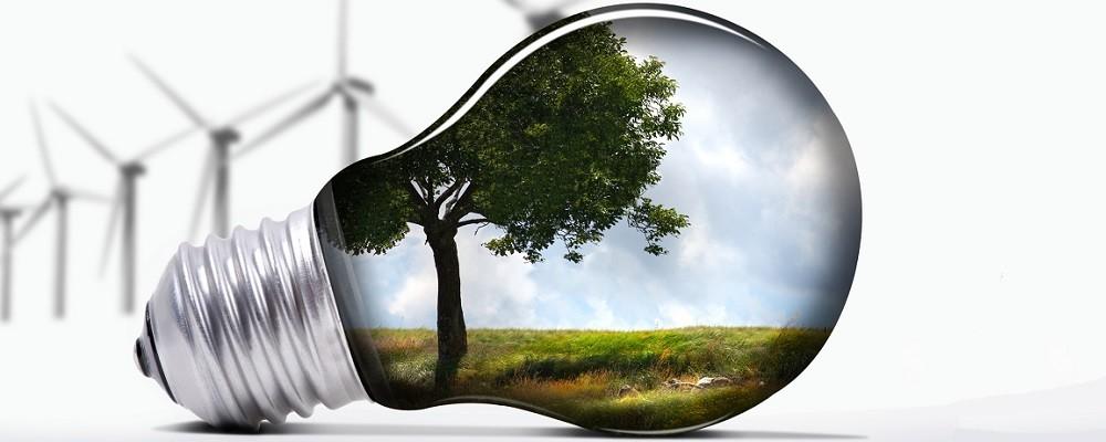 Международный день энергосбережения | Приокско-Террасный заповедник